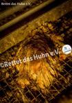 54 Bodenhaltung drinnen totes Huhn auf Gitter